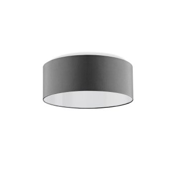 small ceiling lamp