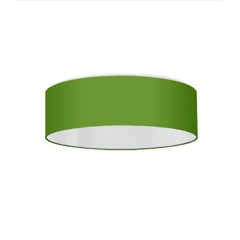 Ceiling lamp apple green