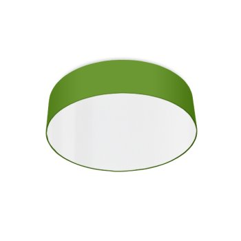 modern ceiling light led apple green
