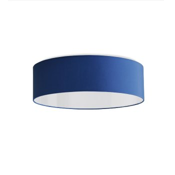 Ceiling lamp blue