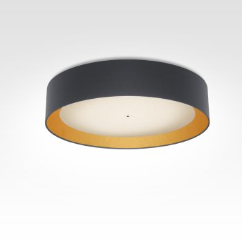 modern led living room bedroom hallway ceiling lamp with smart home control