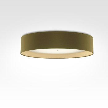 modern living room ceiling light with smart home control