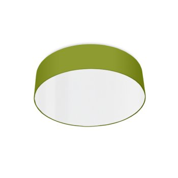 modern ceiling light led green