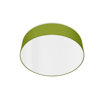 led ceiling luminaire green