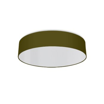 round ceiling light living room olive-green