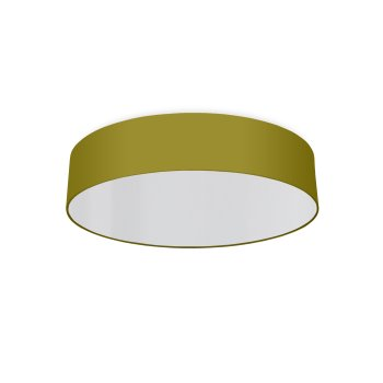 round ceiling light living room bright olive-green