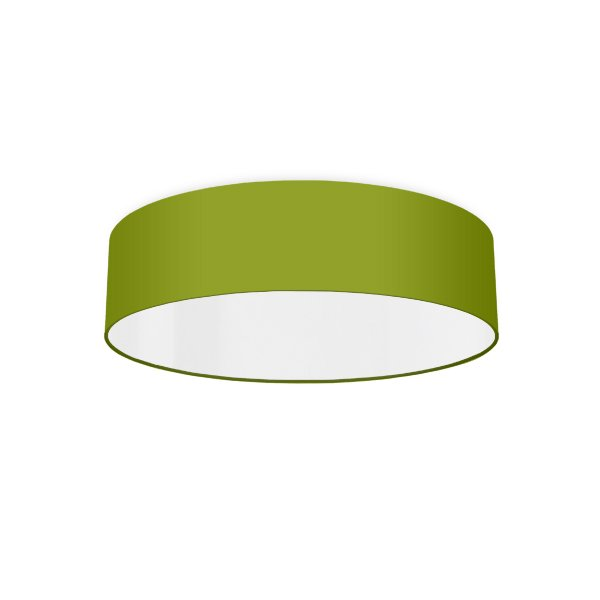 Ceiling luminaire green