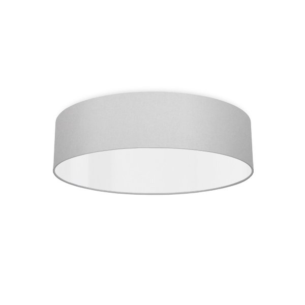 Ceiling luminaire silver